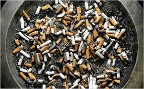 cigarette butt 01