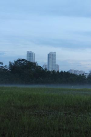 dawn 03