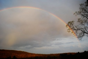 13) Types of rainbows in the sky