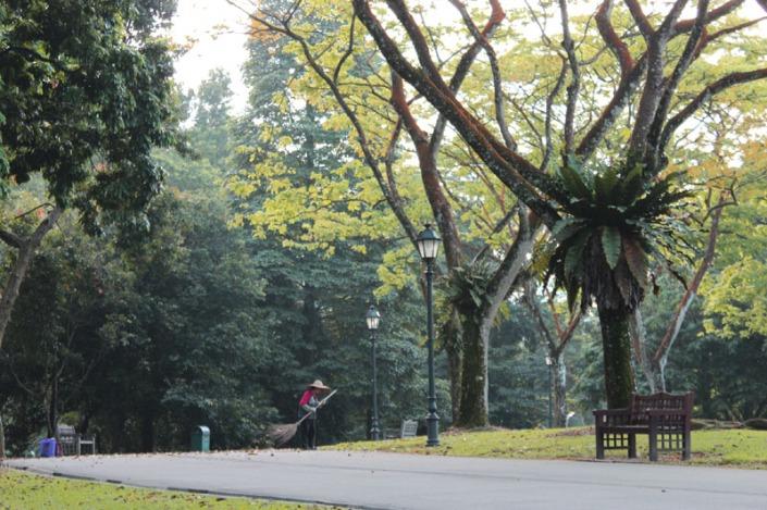park member 03