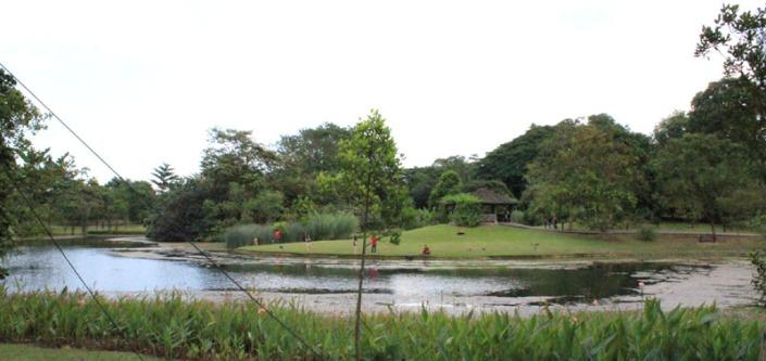 Eco garden 01