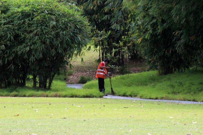 Eco garden 09