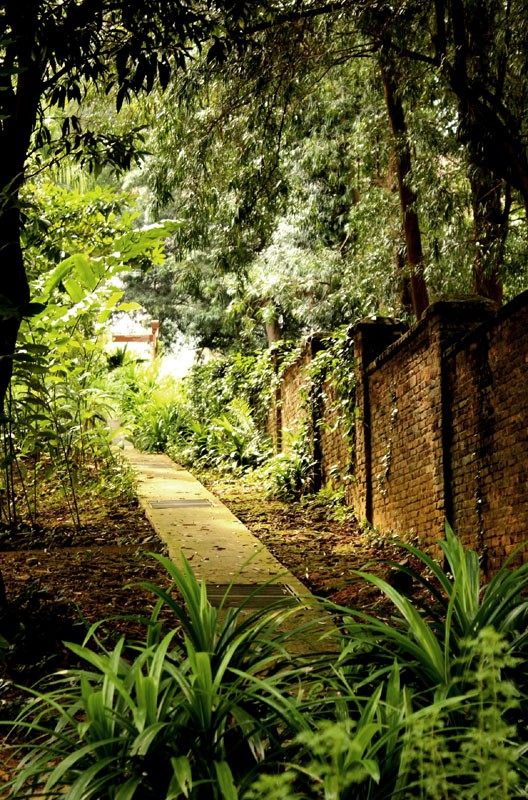secluded path 01