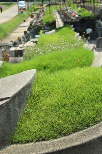 choa chu kang cemetery 05