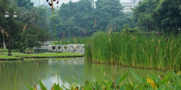 toa payoh garden 03