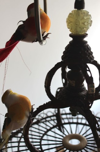birdcage 02