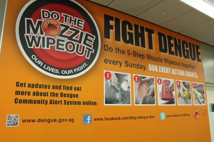 dengue fever 04