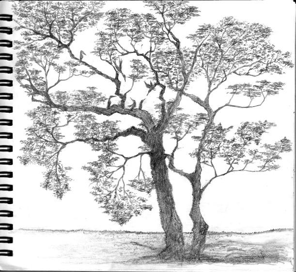 hand sketch 02