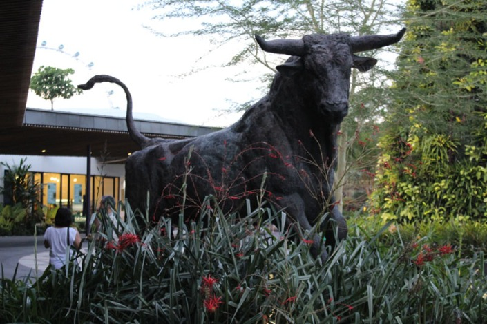 magnificent bull 01