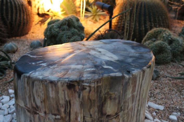 round tree 02